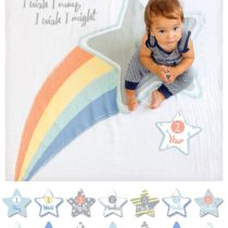 Kit Primo Anno – Copertina + 14 Cards, I Wish I May – Lulujo
